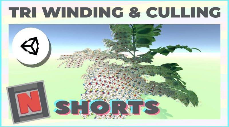Unity Basics: Triangle Winding, Culling Modes & Double Sided Materials #Shorts C | Game Dev Tutorial