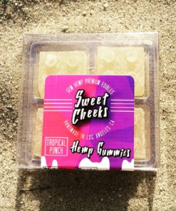 CBD Edibles 100mg Cannabidiol: Fruit Punch CBD Gummies