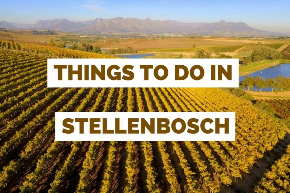 20 Things to do in Stellenbosch, South Africa Travel Guide