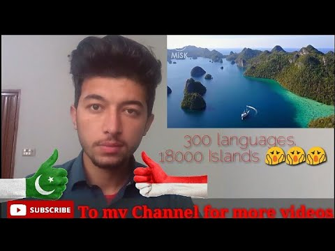 Indonesia the ultimate travel guide|Best places to visit|Explore the Emerald of Equator|Wadii Reacts