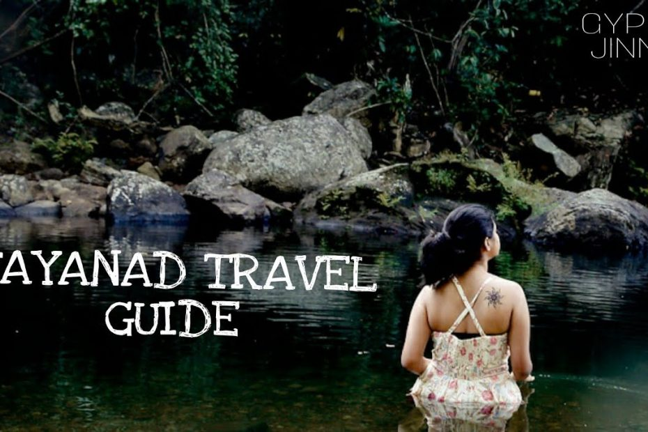 Wayanad Travel Guide | INR 4000 for 3 days | GYPSY JINNS | Tamil