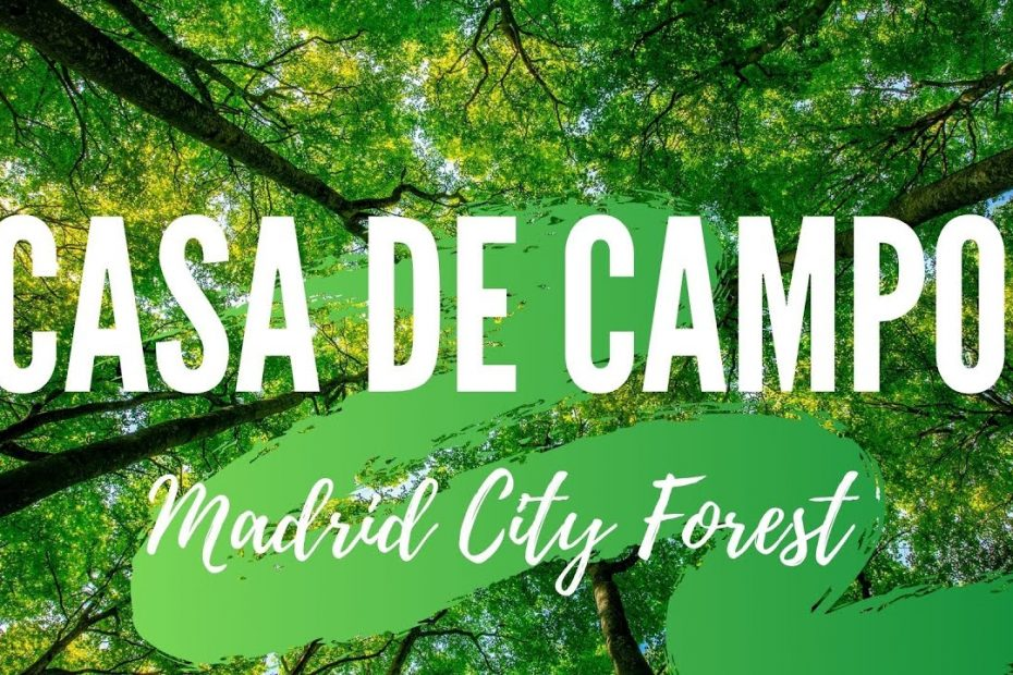 Casa de Campo. Thing to do in Madrid. SPAIN. Travel guide