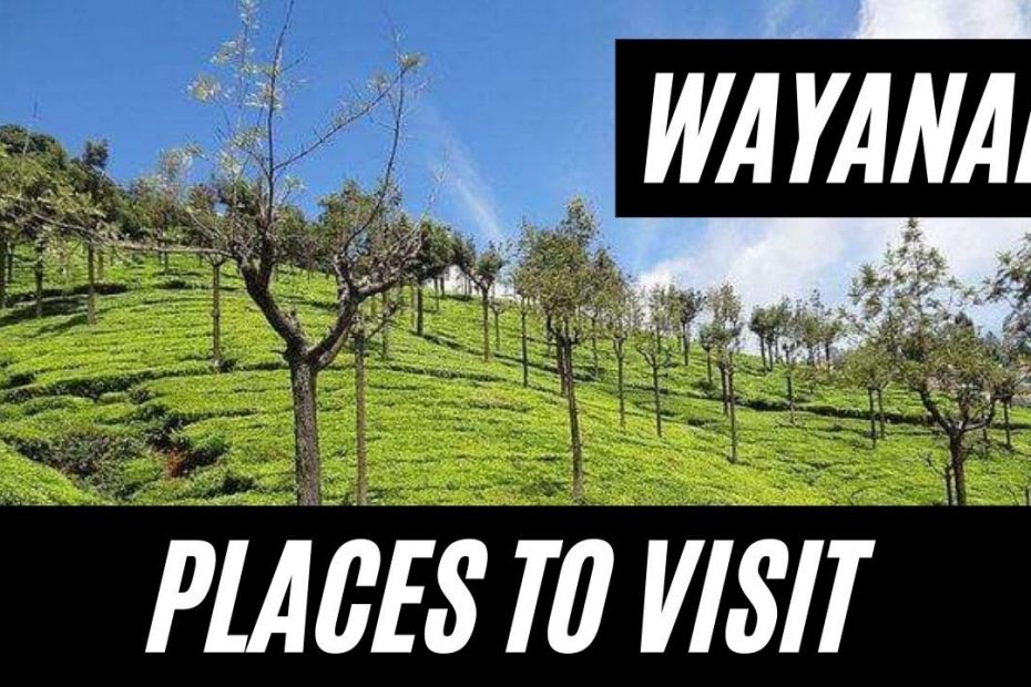 PLACES TO VISIT OR THINGS TO DO IN WAYAND WAYANAD TRAVEL GUIDE   VLOG #47