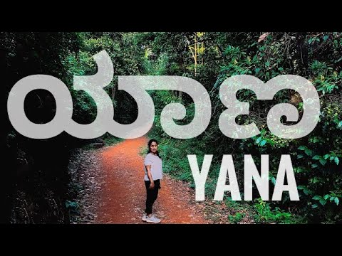 Yana Cave and Temple | Yana caves| Travel guide 2021| Mysterious Place