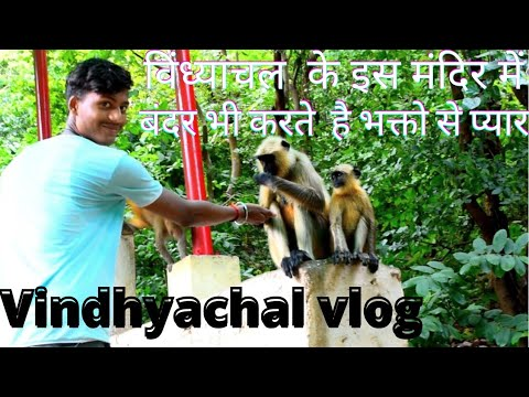 VINDHYACHAL VLOG | COMPLETE TRAVEL GUIDE | MOST FAMOUS TEMPLE OF INDIA | BUDGET EXPLAINED |