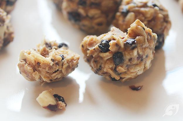 Gluten-Free Food: Wild Blueberry Almond Energy Bites