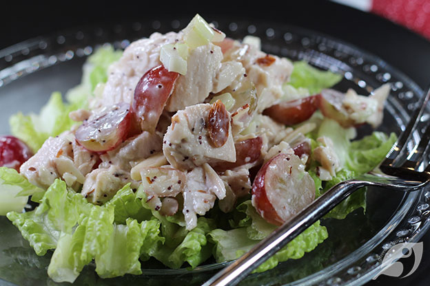 closeup Cranberry Chicken (Turkey) Salad on a bed of Romaine lettuce