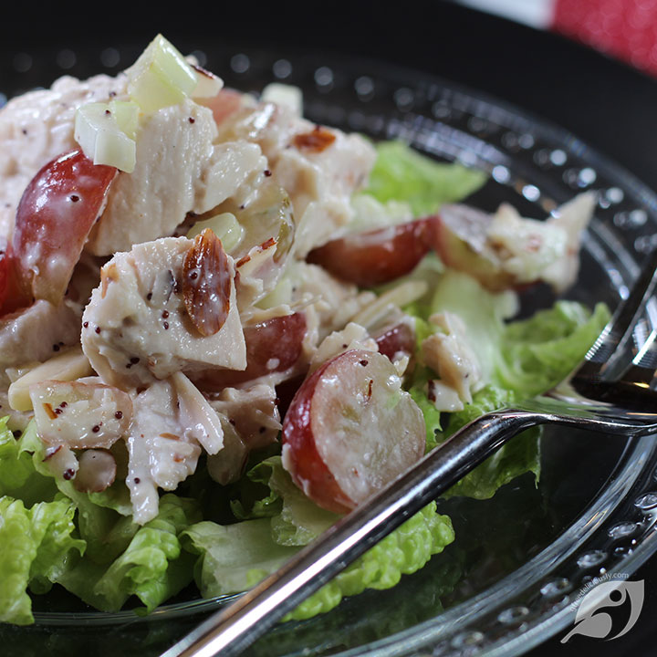 closeup Cranberry Chicken (Turkey) Salad social share image