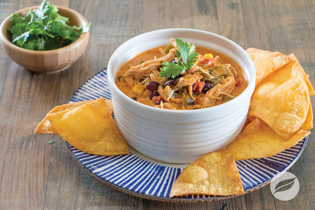 Chicken Enchilada Soup bowl on a plate with tortilla chips and cilantro garnish