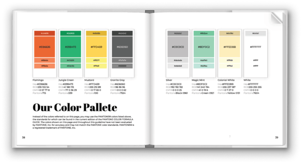 brand book color pallete