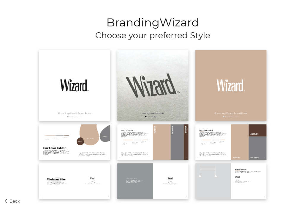 Professional Brand Book