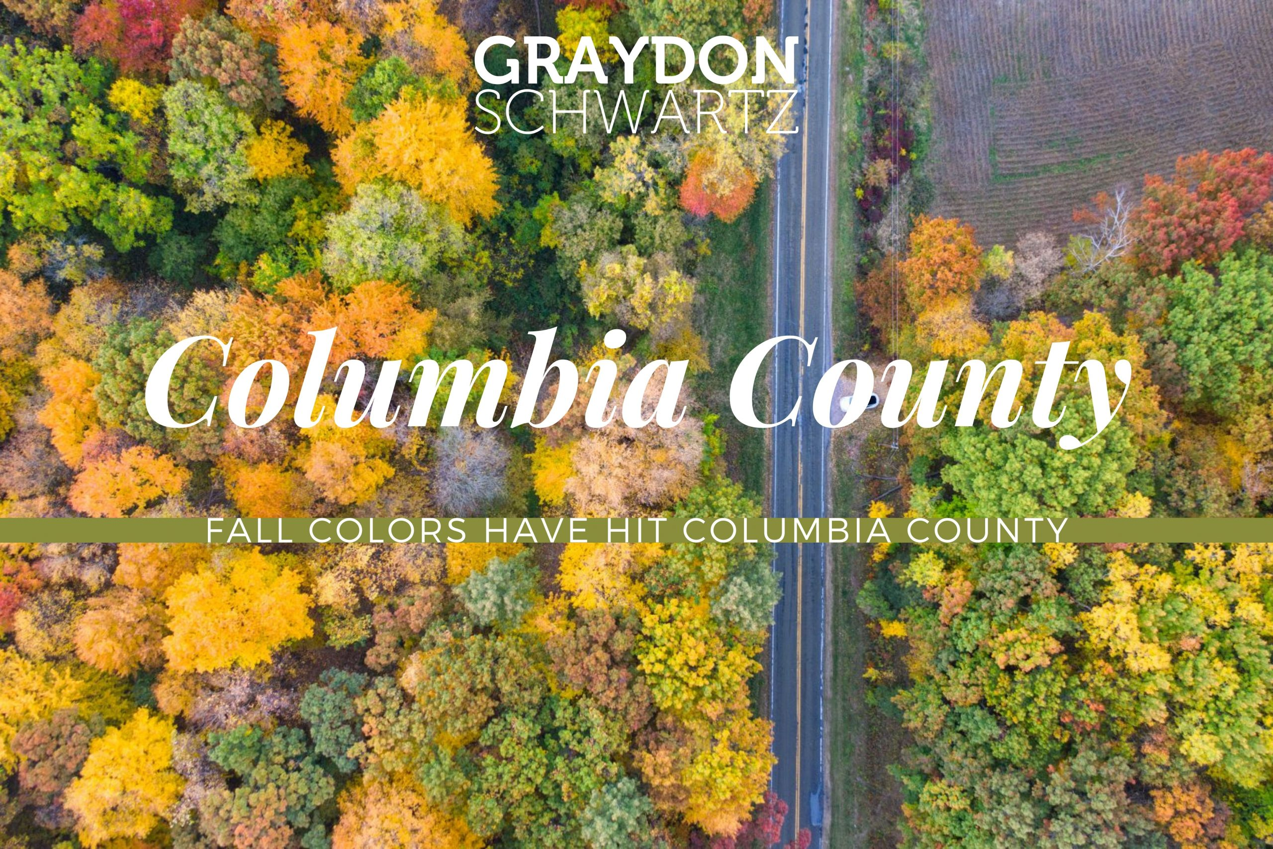 fall colors have hit columbia county scaled | graydonschwartz.com