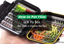 How to Put Flies in A Fly Box