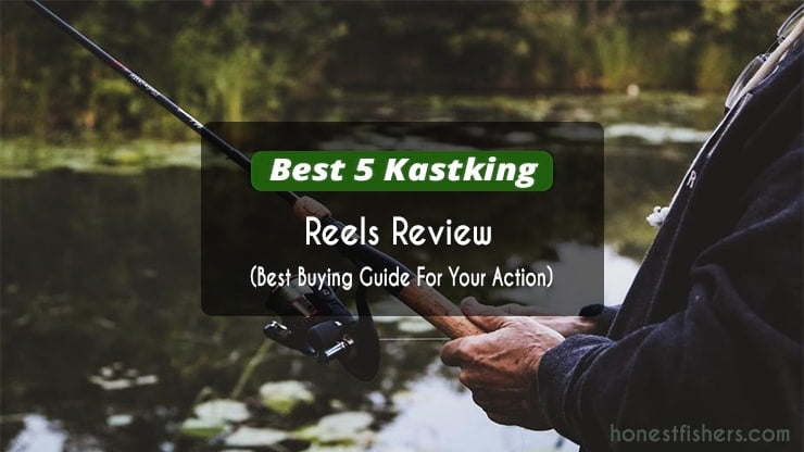 Kastking reels review for you