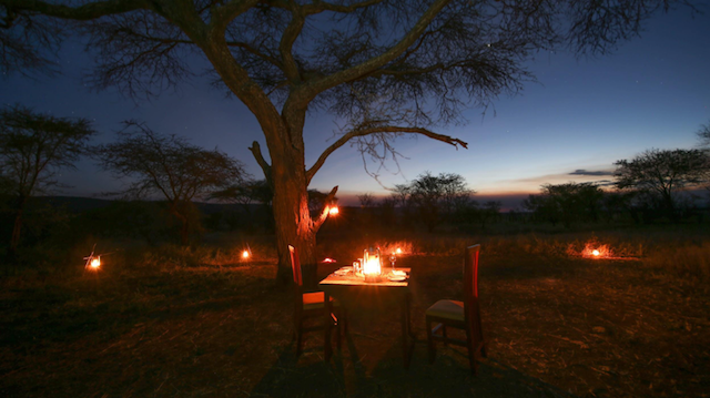 Tanzania romantic candle lit dinner for honeymoon couple