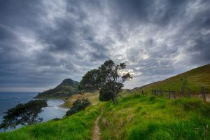 new zealand mountain path for honeymooners