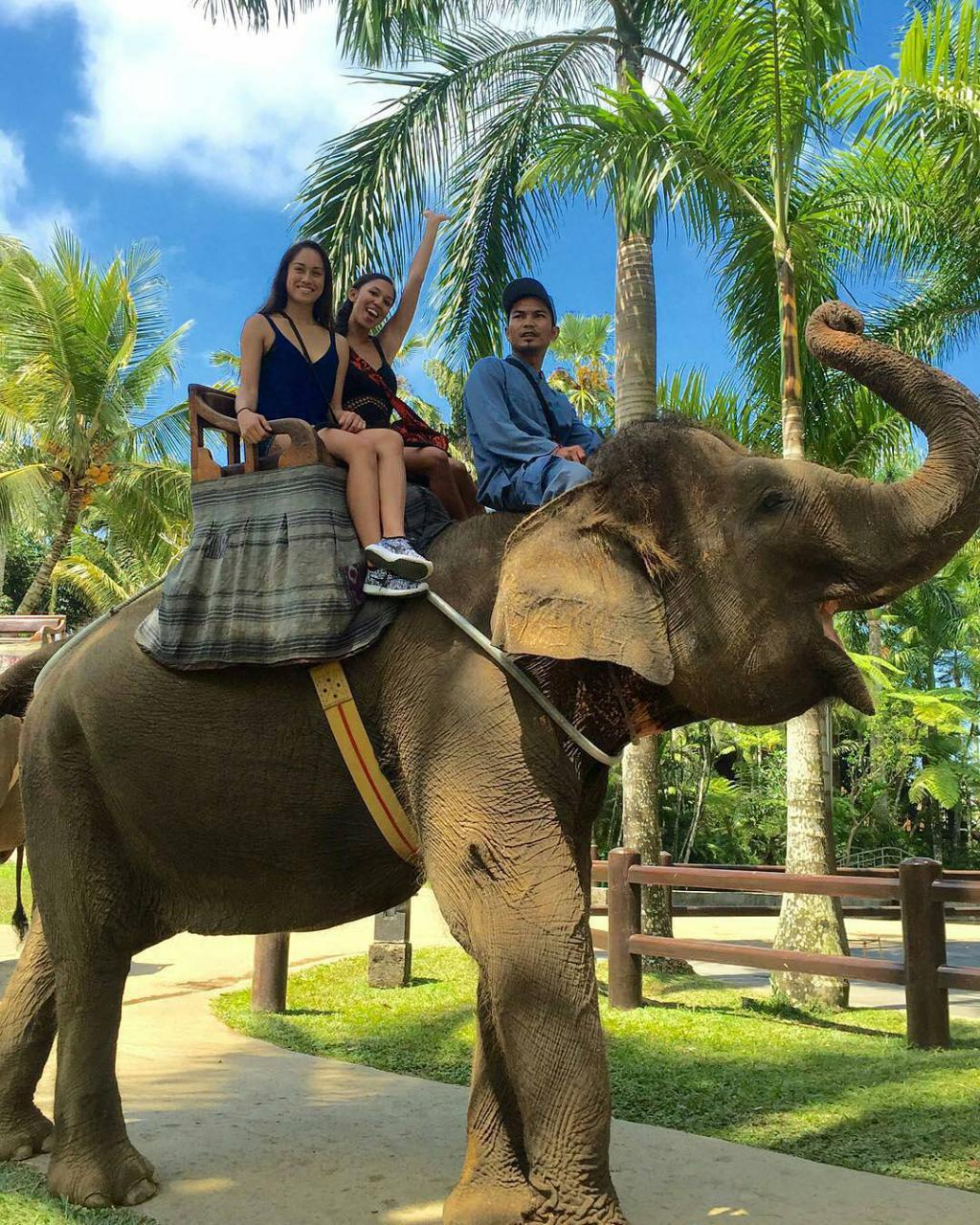 Ride an Elephant in Taro Ubud.