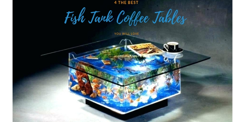 4 Best Fish Tank Coffee Tables You Will Love 2020 Review
