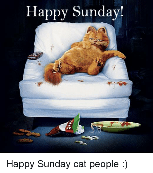 Funny Happy Sunday Images And Quotes