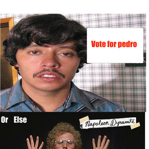 Vote For Pedro By Poonadz Meme Center