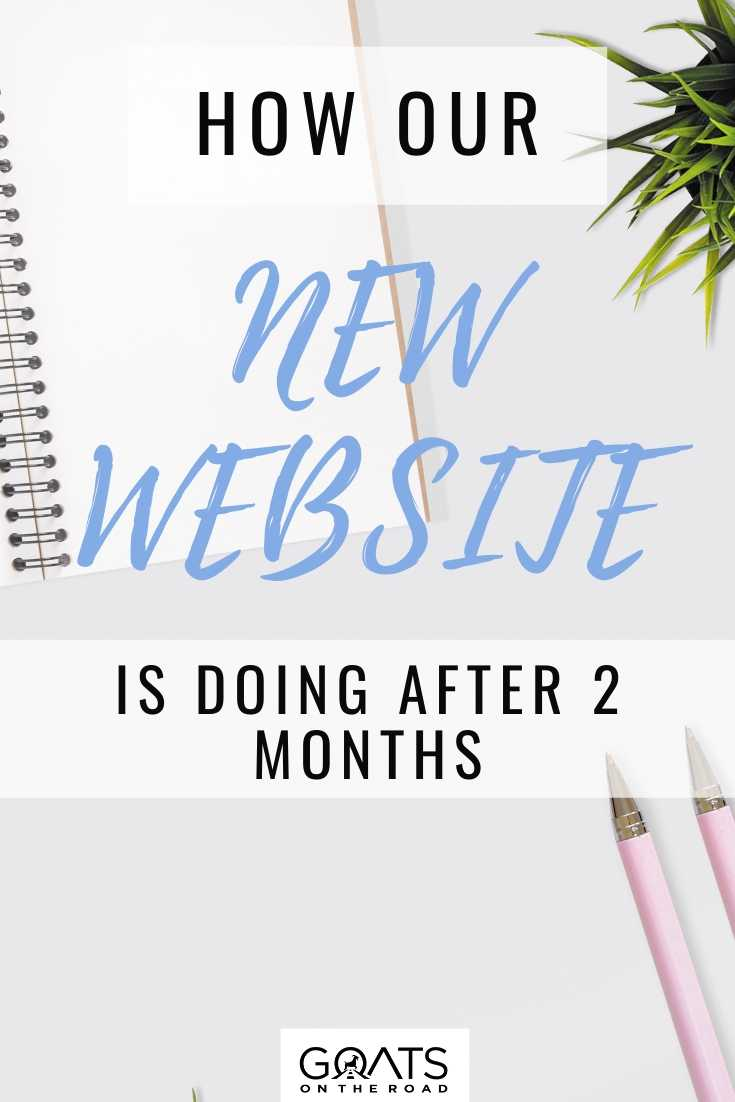 How Our New Website is Doing After 2 Months