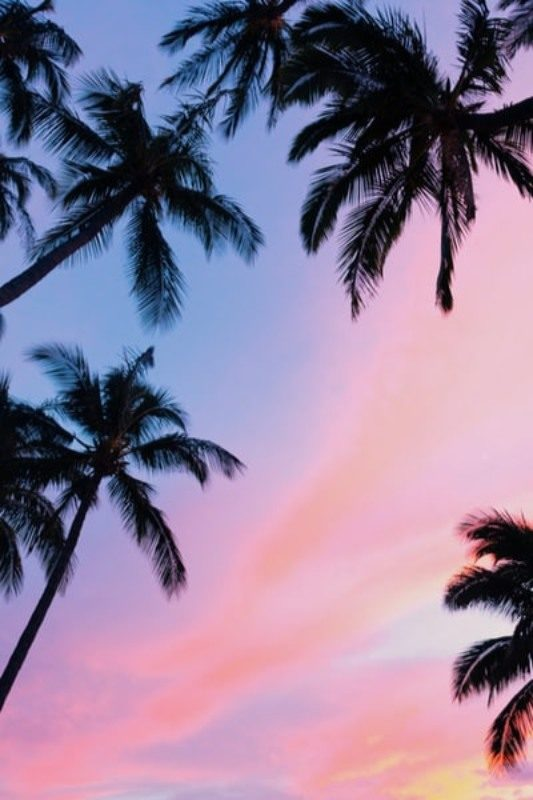 Pastel Pretty Wallpapers Wallpaper For Iphone 11