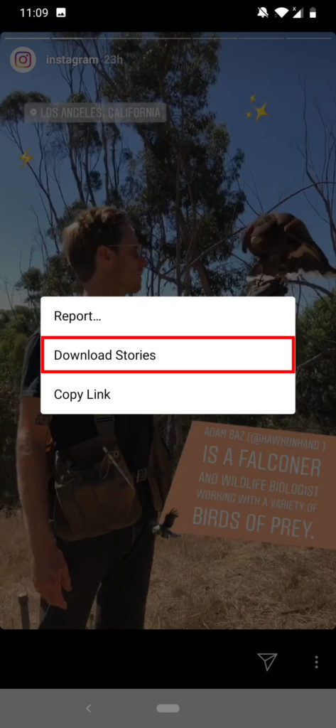 Downloading Stories Using InstaUltra