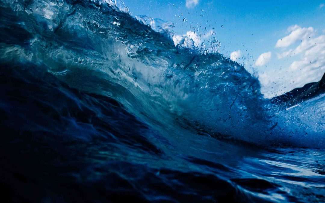 Must-read for everyone who starts a startup: Blue Ocean Strategy