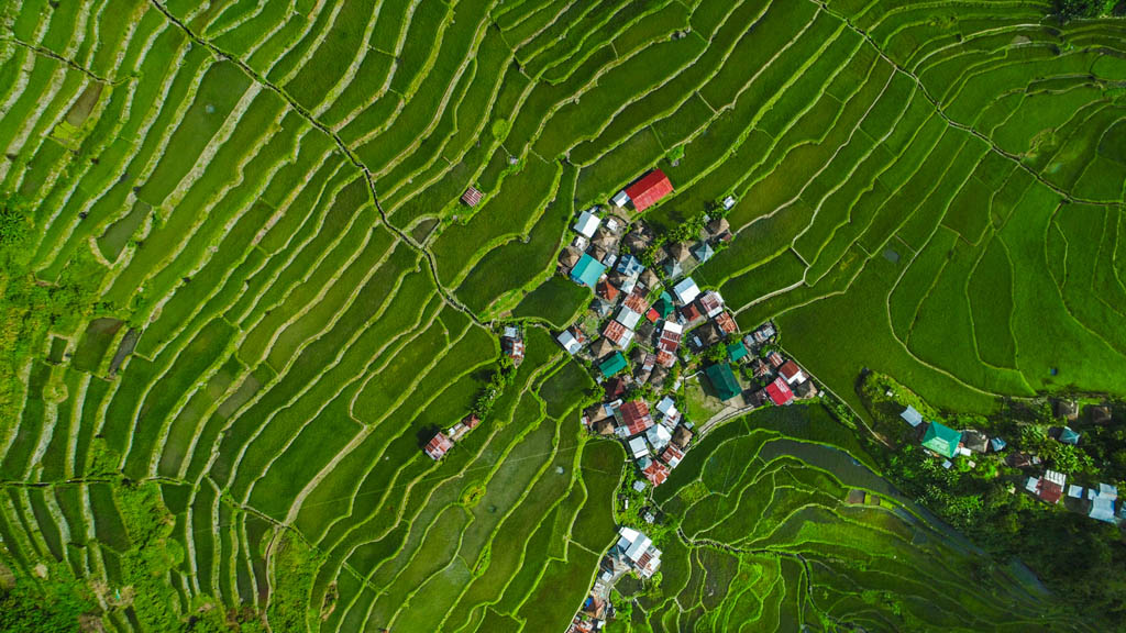 Banaue, Philippines - April 27, 2017: Aerial view showing of Batad rice terraces in Banaue, Ifugao houses and trees can be seen on the background