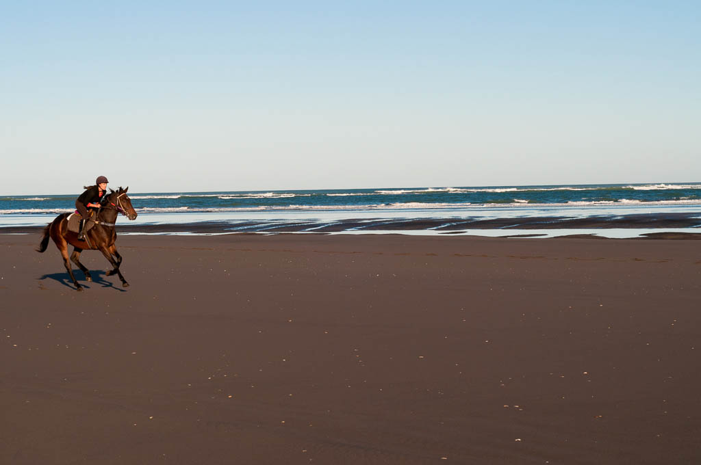 Mid adult woman riding horse on beach