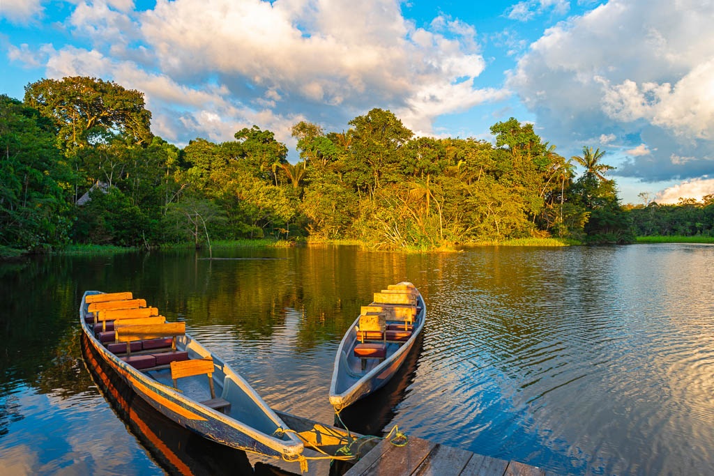 Two traditional wooden canoes at sunset in the Amazon River Basin with the tropical rainforest in the background inside the Yasuni National Park, Ecuador, South America.