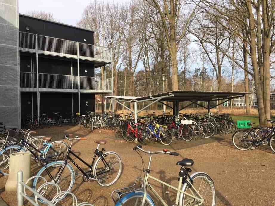 Cykelparkering ved U2 Campus Apartments