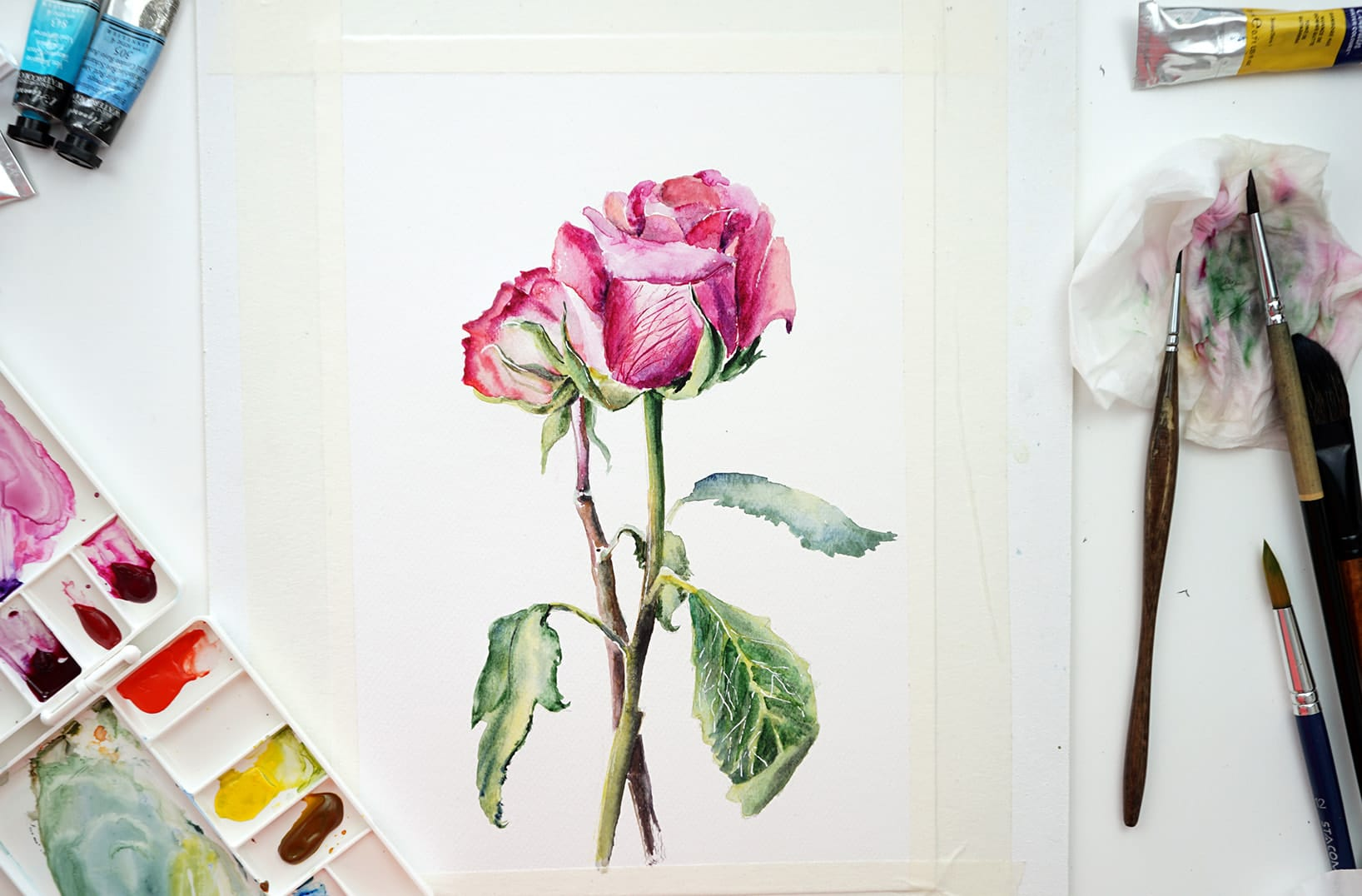 Watercolor Flowers Paint A Rose Step By Step For Beginner
