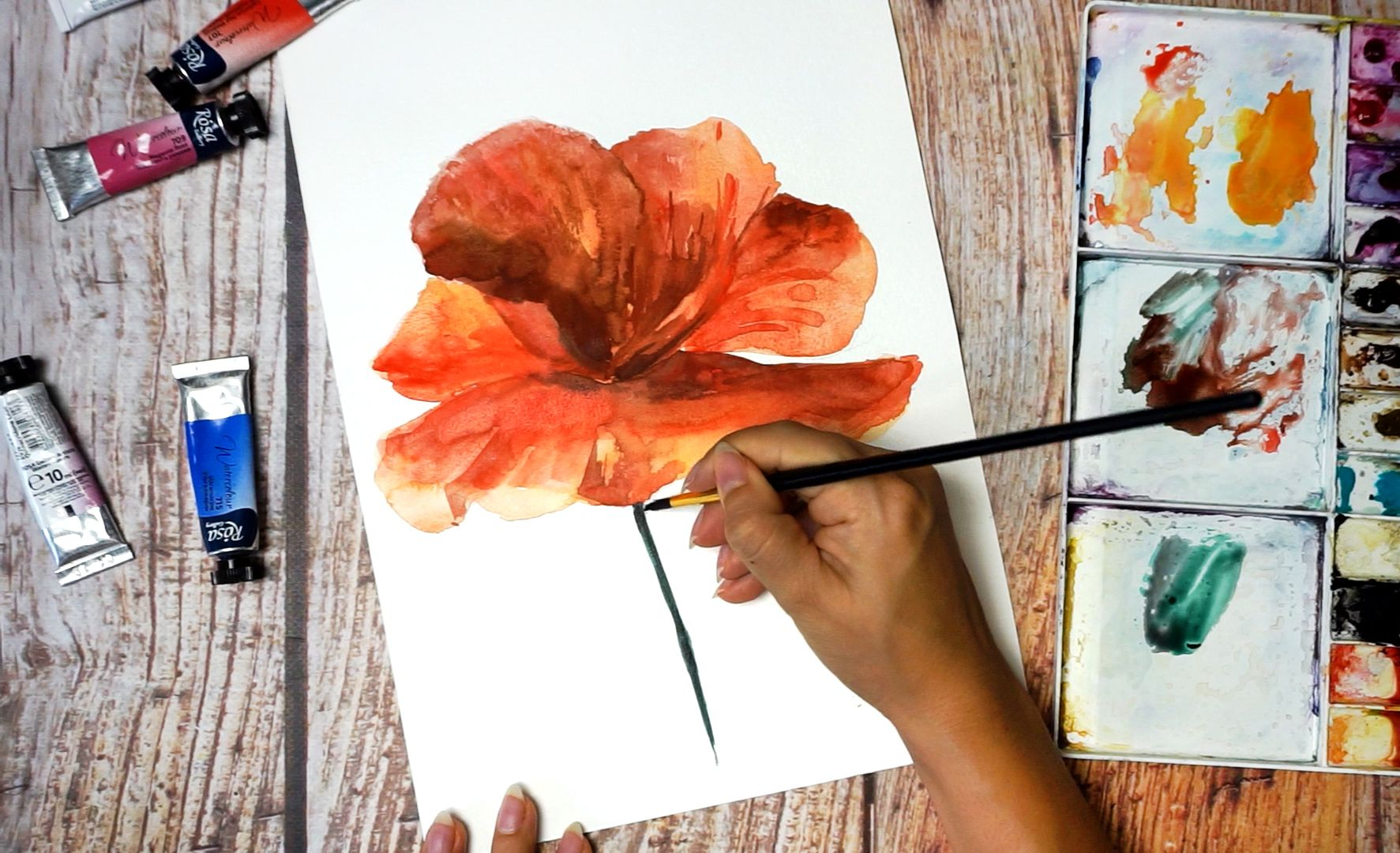 Paint a poppy flower with watercolor step by step 14