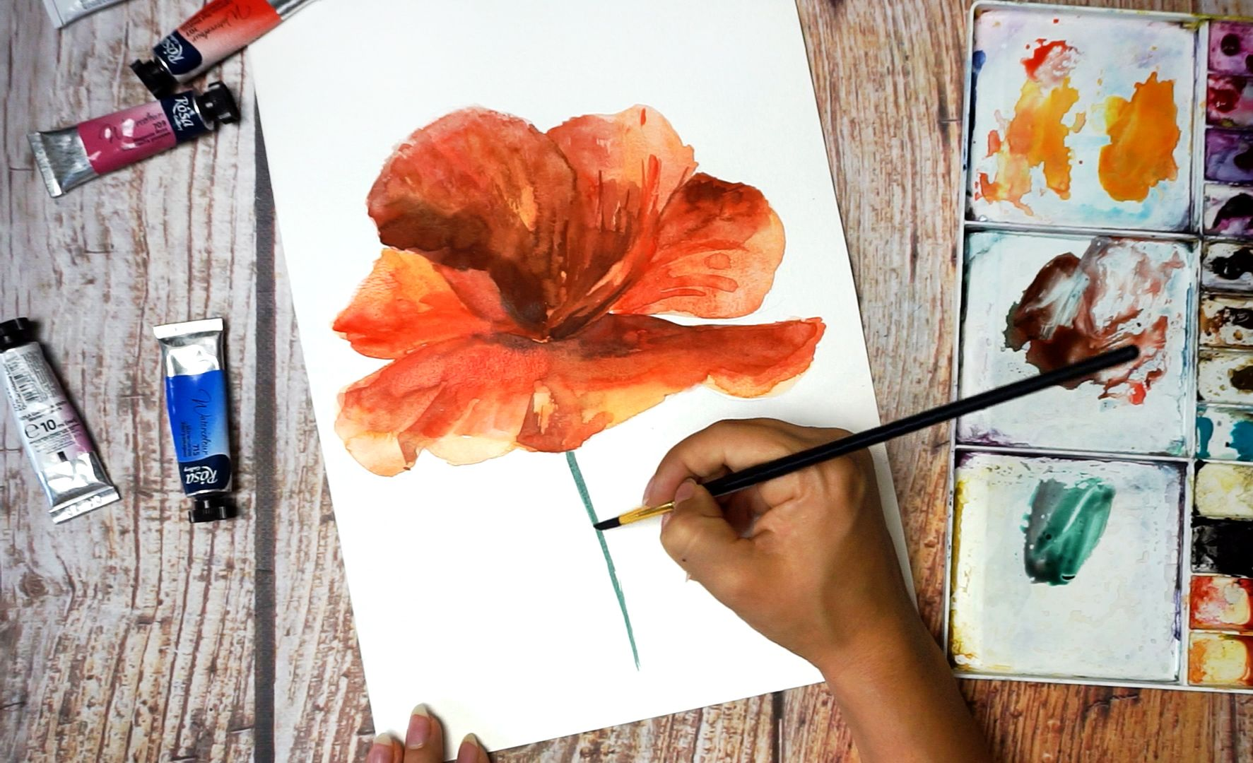 Paint a poppy flower with watercolor step by step 13