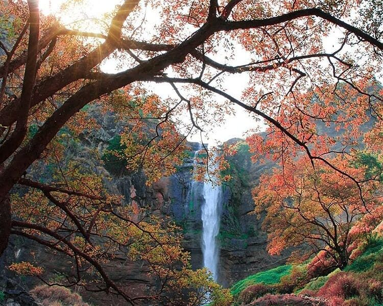 We rarely see this waterfall with these beautiful colors! How cool is this pic? ...