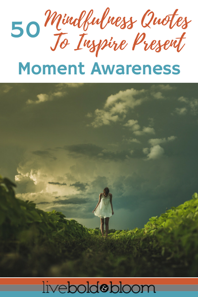 Quotes About Mindfulness 5