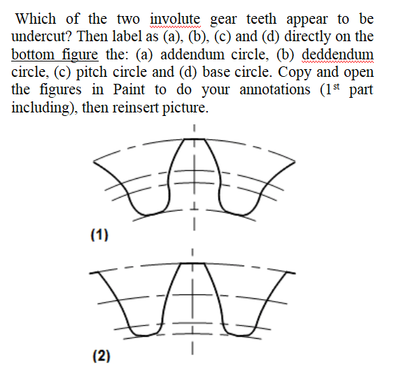 A gear having its material removed in this manner is said to undercut and the process undercutting. Which Of The Two Involute Gear Teeth Appear To Be Chegg Com