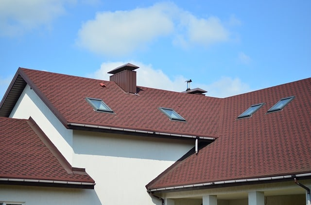 Image result for Roof Paladin