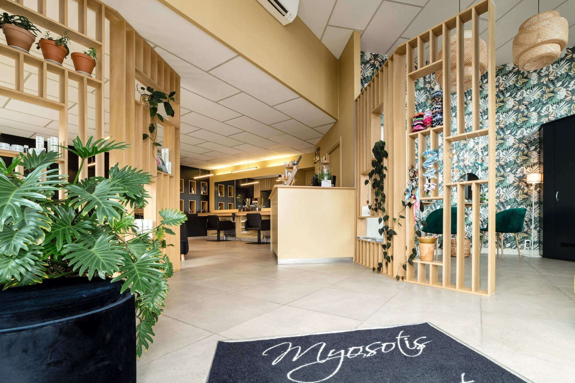 myosotis salon decoration