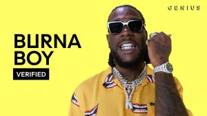 Dj Roszay - Best of Burna Boy Mix 2019