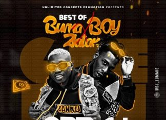 DJ Lummie - Best Of Burna Boy & Zlatan Mix