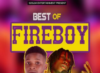 DJ Young - Best of Fireboy DML Mixtape