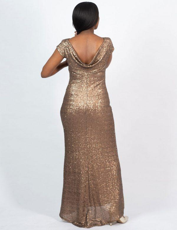 Elegant Evening Gown - Yesteryear - Back