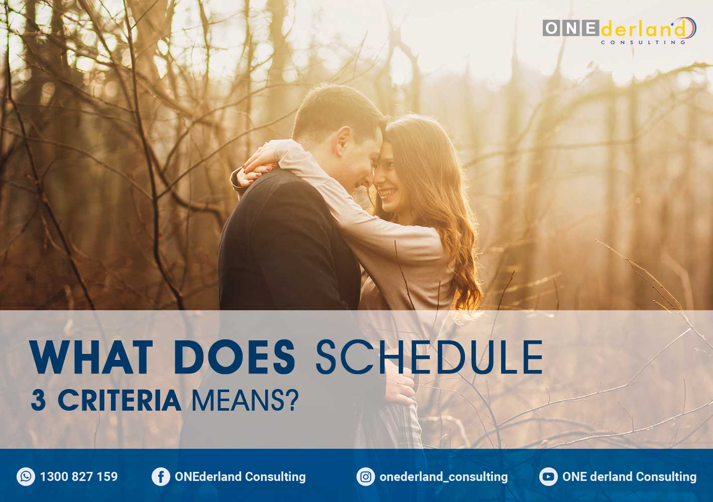 What does Schedule 3 Criteria means?