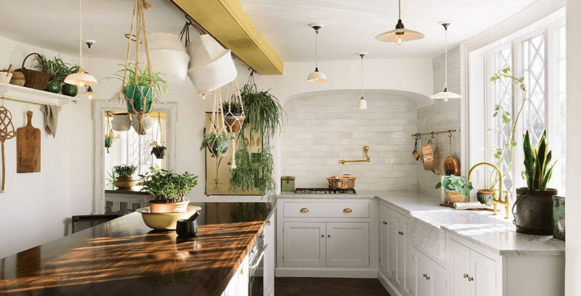 White Kitchen with plants