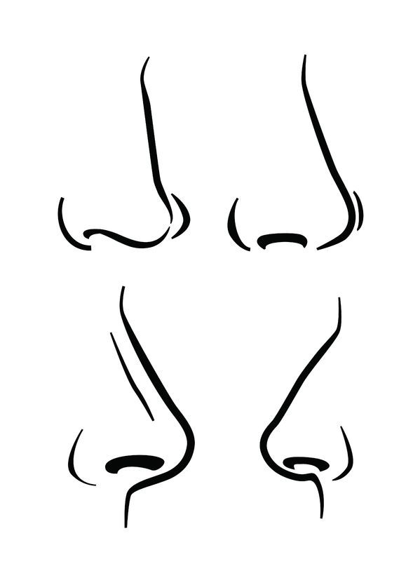 Nose Drawing Step By Step At Paintingvalley Com Explore
