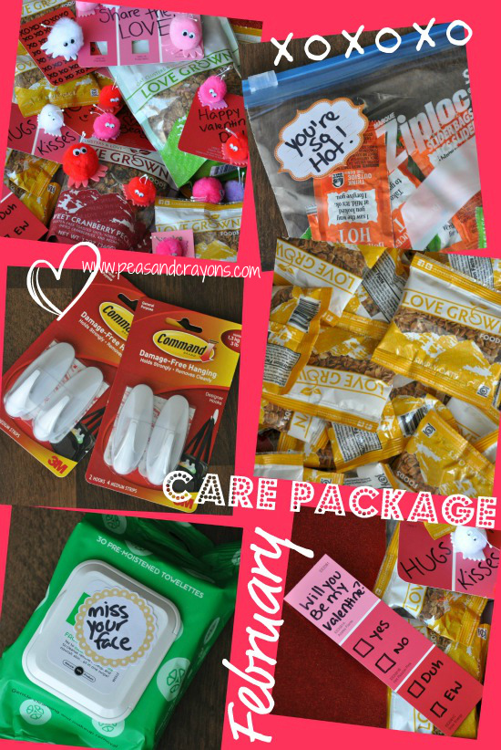 Military Care Package Ideas Care Package Lovin