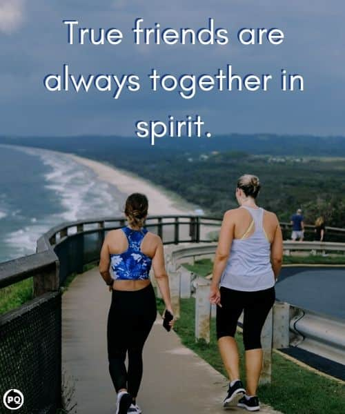 friendship quotes, friendship quotes with images