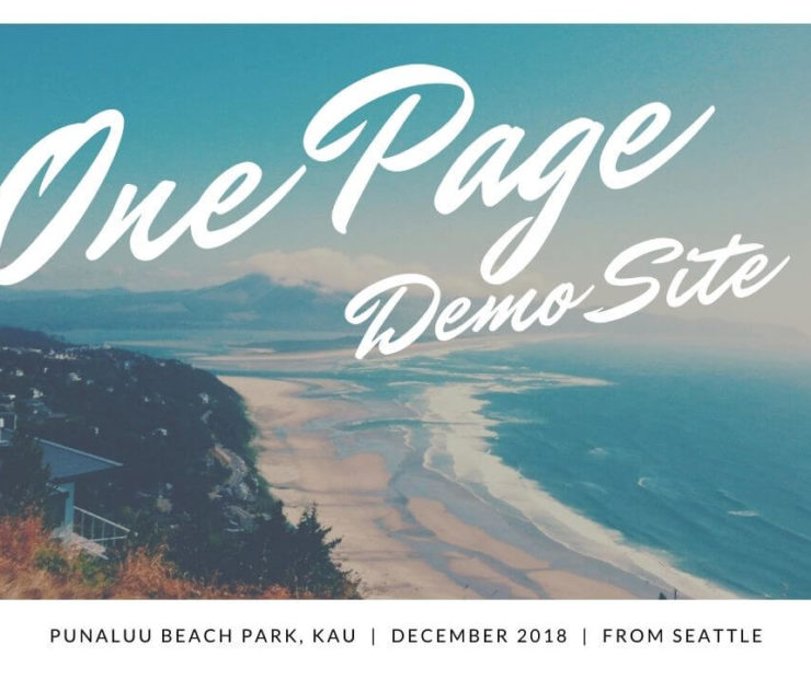 one page demo website seattle